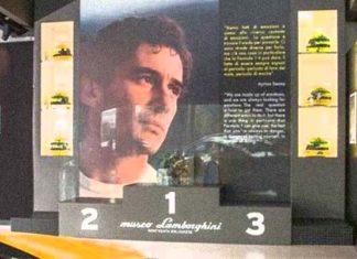 Senna Gallery