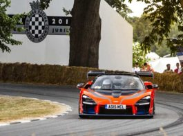 Bruno Senna Goodwood 1018