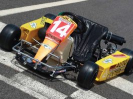 Ayrton Senna Kart